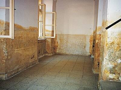 Foto common.wiki