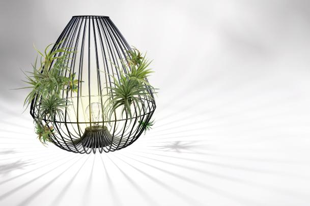 Symbiosis lamp - Maja Repotocnik